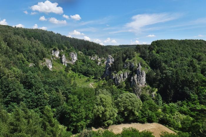 kobylanska-valley-outstanding-climbing-poland.jpg